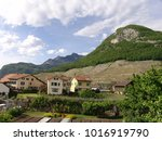 aigle city and castle in... | Shutterstock . vector #1016919790