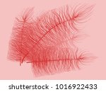 fluff. beautiful hand drawn... | Shutterstock .eps vector #1016922433