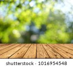brown wood surface on a green... | Shutterstock . vector #1016954548