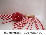 maracas is a wooden shake... | Shutterstock . vector #1017001480