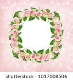 beautiful pink rose flowers in... | Shutterstock . vector #1017008506