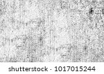 texture black and white... | Shutterstock . vector #1017015244