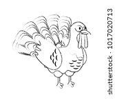 turkey bird cartoon | Shutterstock .eps vector #1017020713