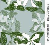 jasmine   flowers  buds  leaves.... | Shutterstock .eps vector #1017024838
