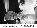 hold rings  hands  ring | Shutterstock . vector #1017026494
