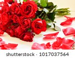 natural red roses background | Shutterstock . vector #1017037564