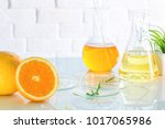 health and beauty background... | Shutterstock . vector #1017065986
