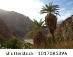 sinai peninsula mountains with...   Shutterstock . vector #1017085396