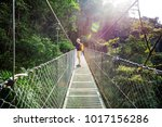 hiking in green tropical jungle ... | Shutterstock . vector #1017156286