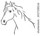 Black Line Horse Sketch Vector...