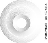 lines in circle form . vector... | Shutterstock .eps vector #1017175816