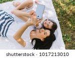 overhead view of beautiful... | Shutterstock . vector #1017213010