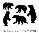 bear silhouettes on white... | Shutterstock .eps vector #1017219910
