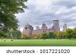 trees and buildings in central... | Shutterstock . vector #1017221020