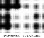 abstract monochrome halftone... | Shutterstock .eps vector #1017246388