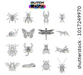 glitch effect insects logos.... | Shutterstock .eps vector #1017249970