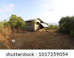 photo of a nipa hut  kamalig or ... | Shutterstock . vector #1017259054