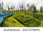 train ride from ella  to kandy... | Shutterstock . vector #1017274093