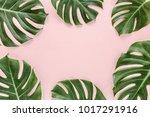 frame of tropical leaves... | Shutterstock . vector #1017291916