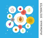 set of fruit icons flat style... | Shutterstock . vector #1017304723