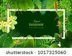 exotic tropical leaf background ... | Shutterstock .eps vector #1017325060