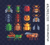 different insects set. pixel... | Shutterstock .eps vector #1017336769