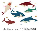 of the shark is different in... | Shutterstock . vector #1017365518