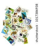 a collage of postage stamps on... | Shutterstock . vector #1017386938