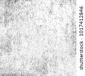 texture of dust  spots  lines ... | Shutterstock . vector #1017412846