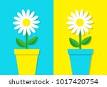 white daisy chamomile icon.... | Shutterstock .eps vector #1017420754