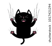 black fat cat nail claw scratch ... | Shutterstock .eps vector #1017421294