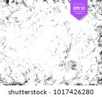 vector black and white hand... | Shutterstock .eps vector #1017426280