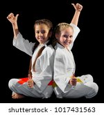 Small photo of Little girls martial arts fighters isolated