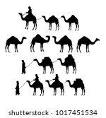 camel silhouettes. vector   Shutterstock .eps vector #1017451534