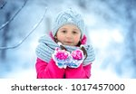 closeup winter portrait of cute ... | Shutterstock . vector #1017457000