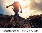 woman hiker walks on the trail... | Shutterstock . vector #1017477634