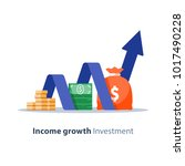 income growth chart  banking... | Shutterstock .eps vector #1017490228