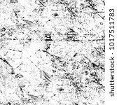 chaotic grunge ink particles.... | Shutterstock . vector #1017511783