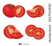 tomato. set of fresh tomatoes ... | Shutterstock .eps vector #1017514930