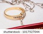 ring   Shutterstock . vector #1017527044