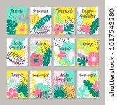 set of creative universal... | Shutterstock .eps vector #1017543280