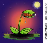 funny venus fly trap cartoon... | Shutterstock .eps vector #1017583870