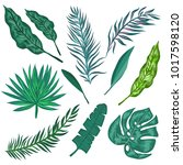 tropical palm leaves. set of... | Shutterstock .eps vector #1017598120