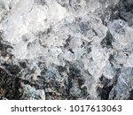 macro shot of melting snow ... | Shutterstock . vector #1017613063