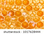 Extreme Macro Shot Of A Honey...