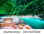 stony bed of beautiful... | Shutterstock . vector #1017637600