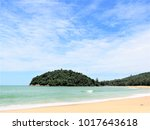 the isolated greenery island at ... | Shutterstock . vector #1017643618