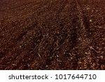 soil  cultivated dirt  earth ... | Shutterstock . vector #1017644710