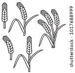 wheat ear icon set | Shutterstock .eps vector #1017688999
