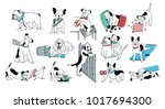 set of problem with bad dog... | Shutterstock . vector #1017694300